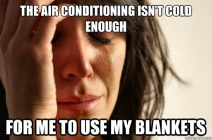The Air-Conditioning Isn't Cold Enough For Me To Use My Blankets