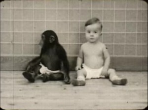 Chimp and Babe